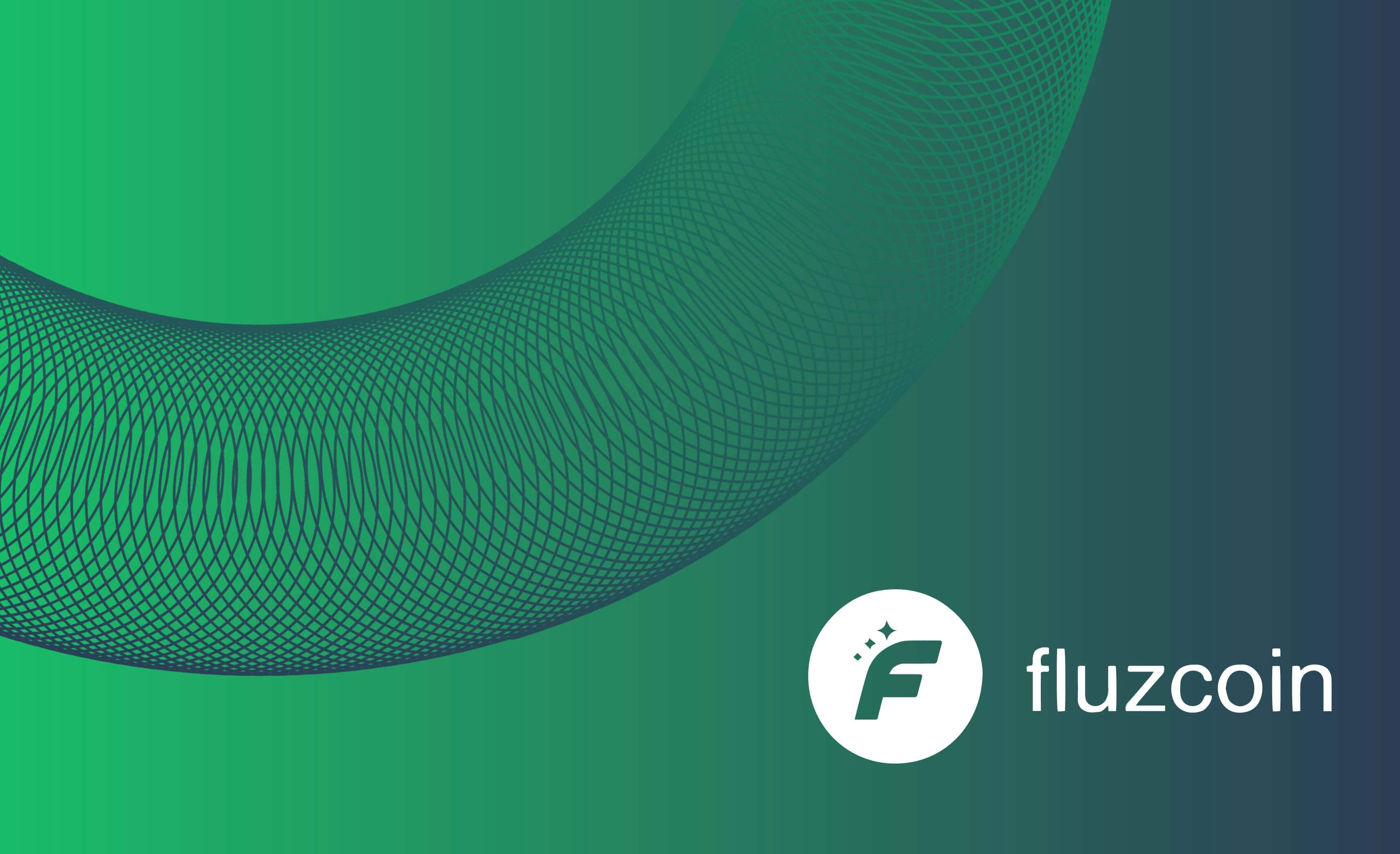 Announcement of Fluzcoin
